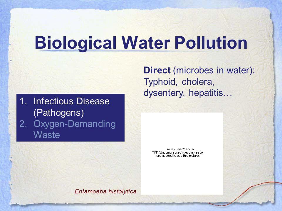 Biological Water Pollution 1.Infectious Disease (Pathogens) 2.Oxygen-Demanding Waste Direct (microbes in water): Typhoid, cholera, dysentery, hepatitis… Entamoeba histolytica