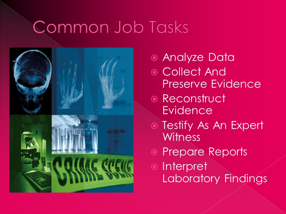  Eye for detail  Be organized  Be able to work in a team  Be able to communicate well  Be able to interpret information and document it