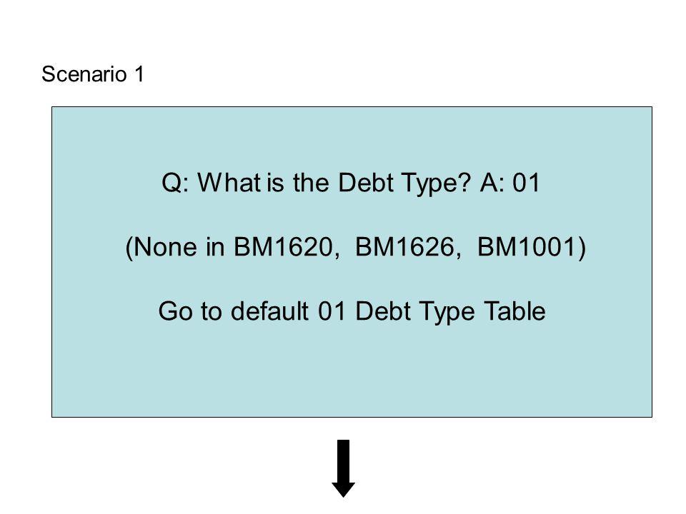 Scenario 1 Q: What is the Debt Type.