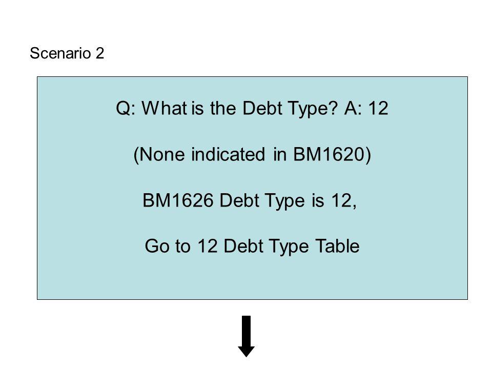Scenario 2 Q: What is the Debt Type.