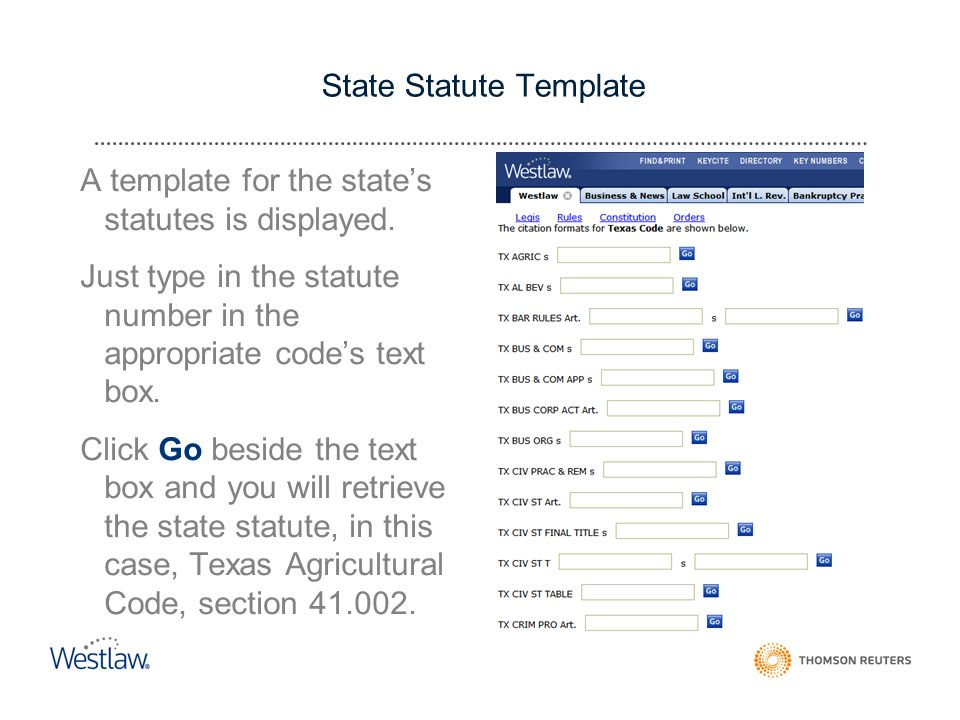 State Statute Template A template for the state's statutes is displayed.