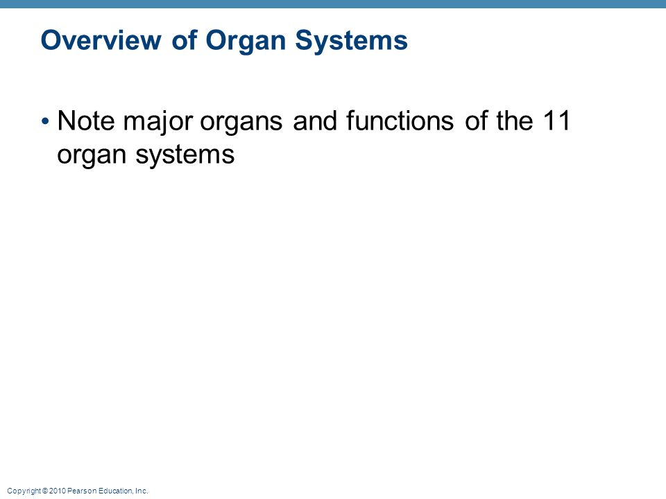 Copyright © 2010 Pearson Education, Inc. Overview of Organ Systems Note major organs and functions of the 11 organ systems