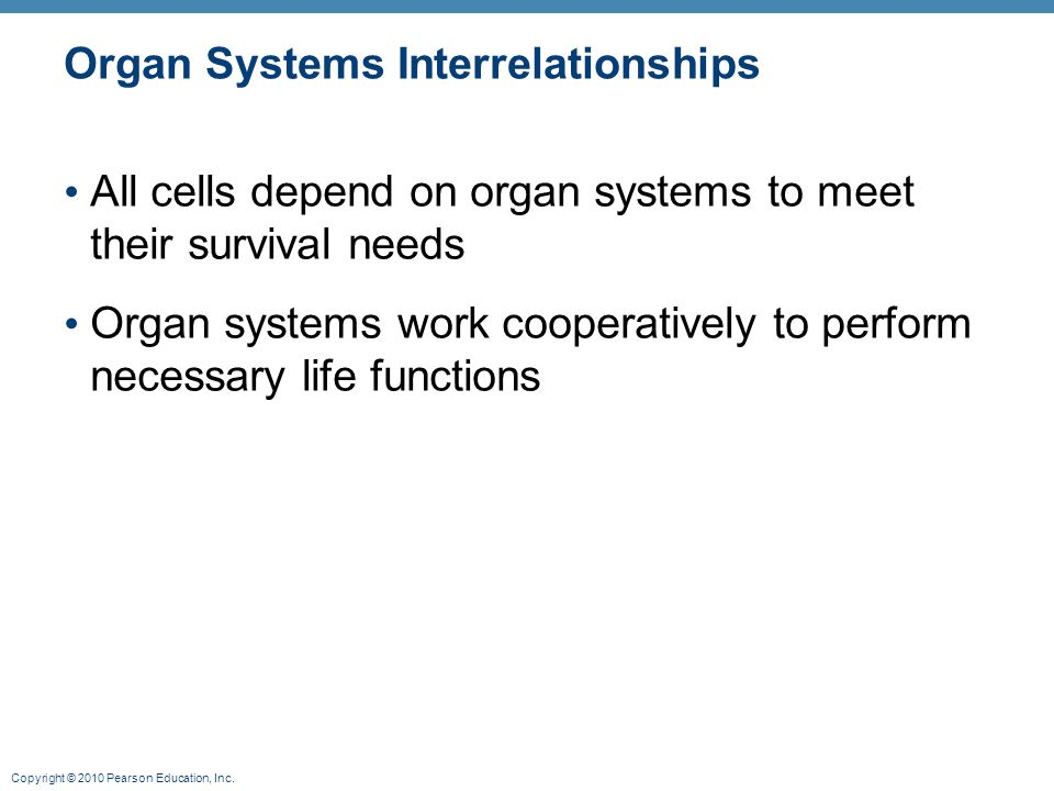 Copyright © 2010 Pearson Education, Inc. Organ Systems Interrelationships All cells depend on organ systems to meet their survival needs Organ systems
