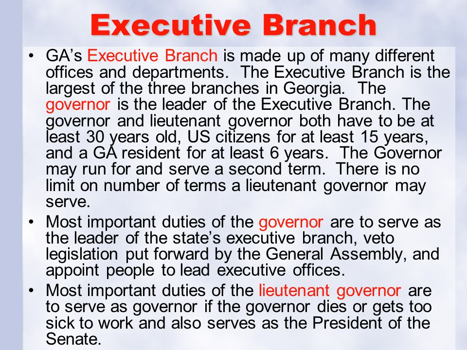Executive Branch GA's Executive Branch is made up of many different offices and departments.