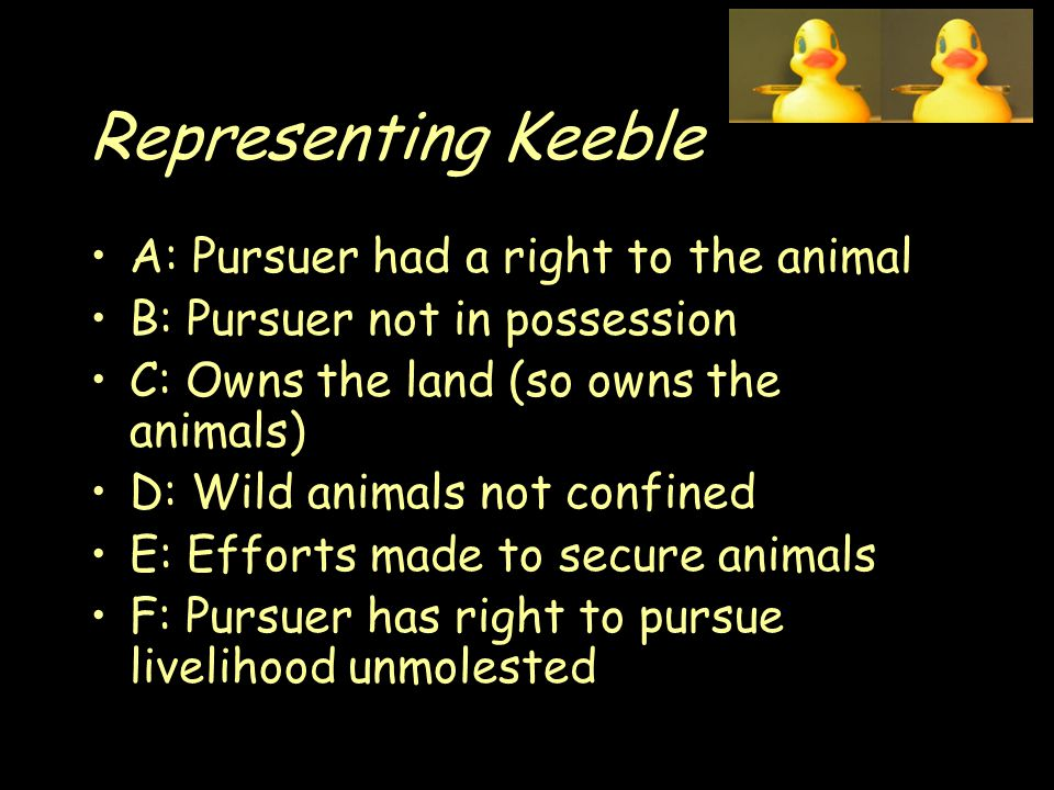 Representing Keeble A: Pursuer had a right to the animal B: Pursuer not in possession C: Owns the land (so owns the animals) D: Wild animals not confined E: Efforts made to secure animals F: Pursuer has right to pursue livelihood unmolested