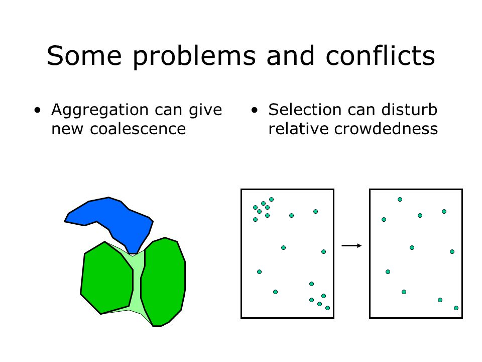 Some problems and conflicts Aggregation can give new coalescence Selection can disturb relative crowdedness