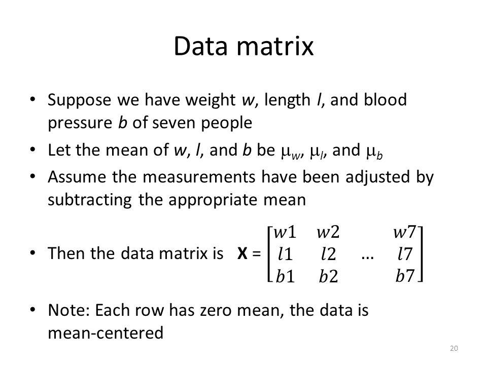 Data matrix 20