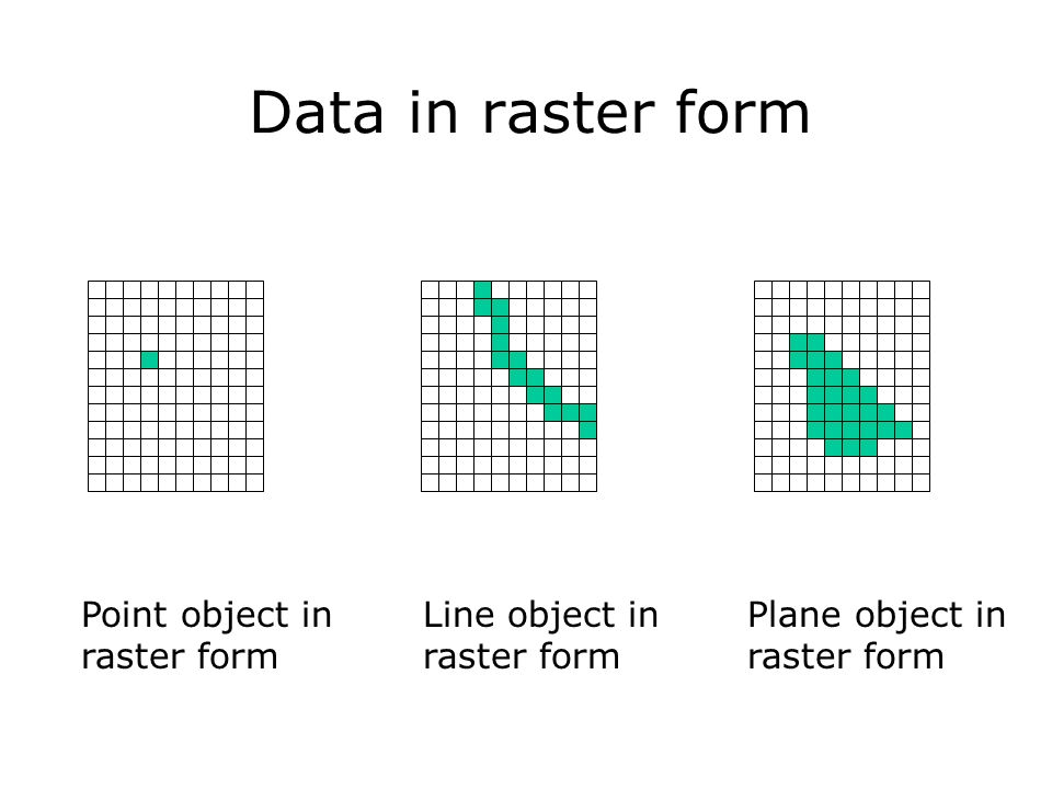 Data in raster form Point object in raster form Line object in raster form Plane object in raster form