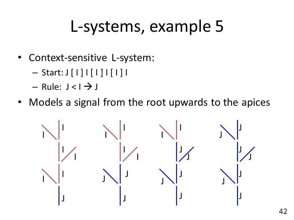L-systems, example 5 Context-sensitive L-system: – Start: J [ I ] I [ I ] I [ I ] I – Rule: J < I  J Models a signal from the root upwards to the apices J I I I I I I J I J I I J I J J J J I J I J J J J J J J 42