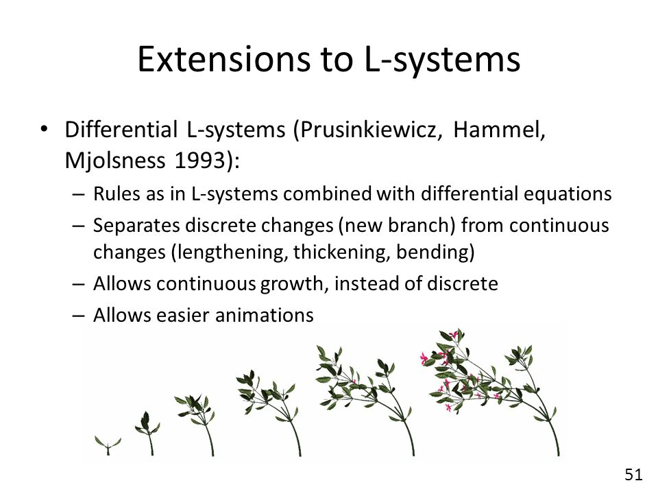 Extensions to L-systems Differential L-systems (Prusinkiewicz, Hammel, Mjolsness 1993): – Rules as in L-systems combined with differential equations – Separates discrete changes (new branch) from continuous changes (lengthening, thickening, bending) – Allows continuous growth, instead of discrete – Allows easier animations 51