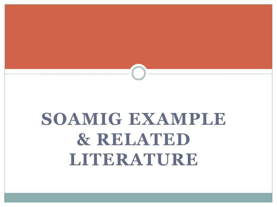 SOAMIG EXAMPLE & RELATED LITERATURE