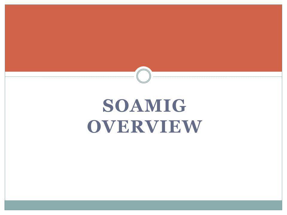SOAMIG OVERVIEW