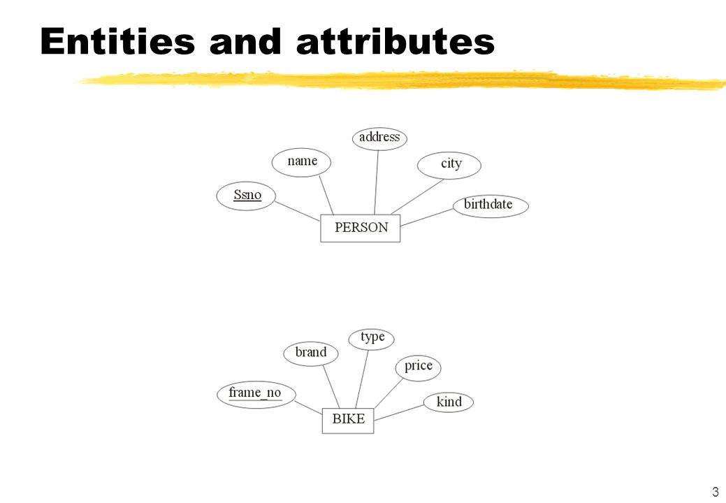 3 Entities and attributes