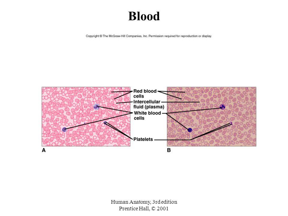 Human Anatomy, 3rd edition Prentice Hall, © 2001 Blood