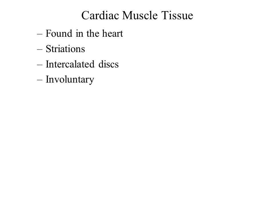 Cardiac Muscle Tissue –Found in the heart –Striations –Intercalated discs –Involuntary