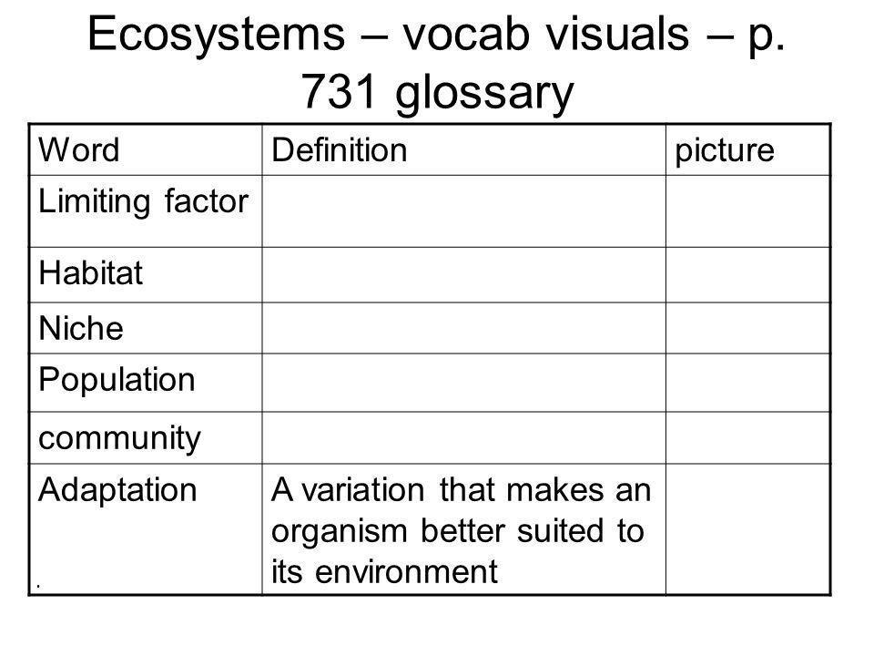 Ecosystems – vocab visuals – p.