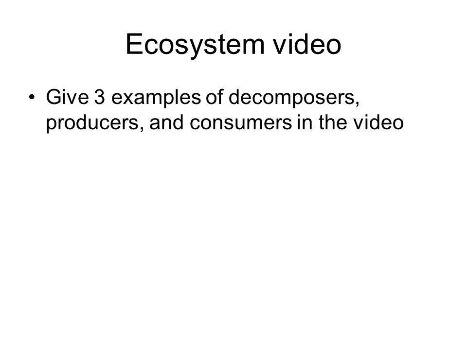 Ecosystem video Give 3 examples of decomposers, producers, and consumers in the video