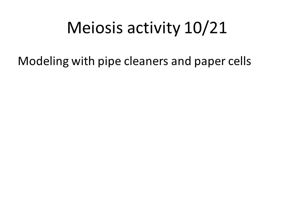Meiosis activity 10/21 Modeling with pipe cleaners and paper cells