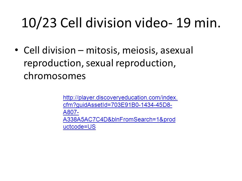 10/23 Cell division video- 19 min.