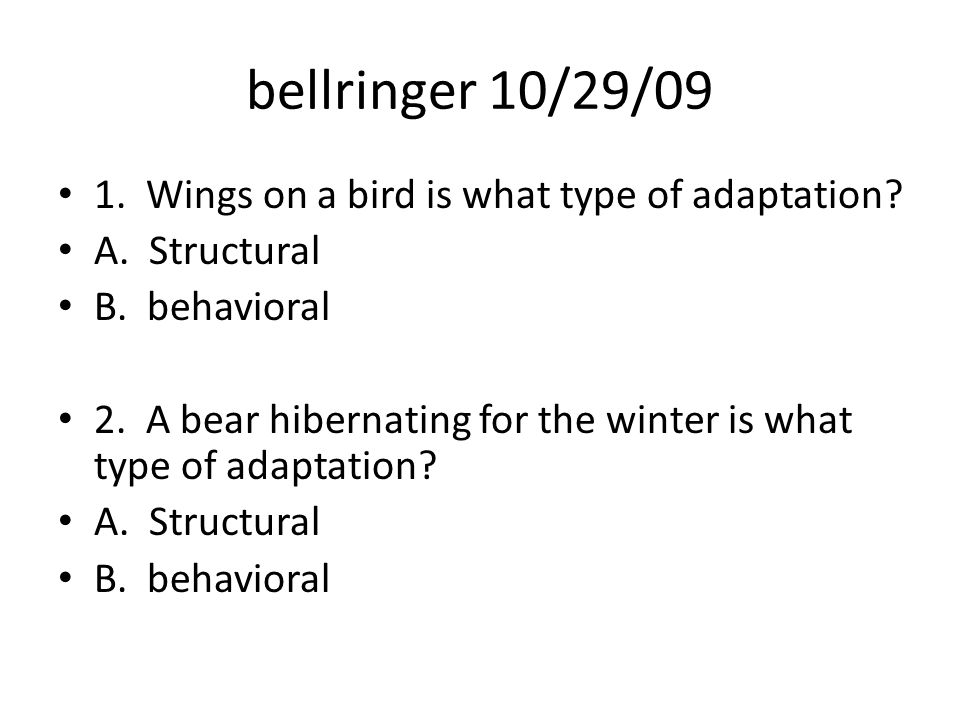 bellringer 10/29/09 1. Wings on a bird is what type of adaptation.
