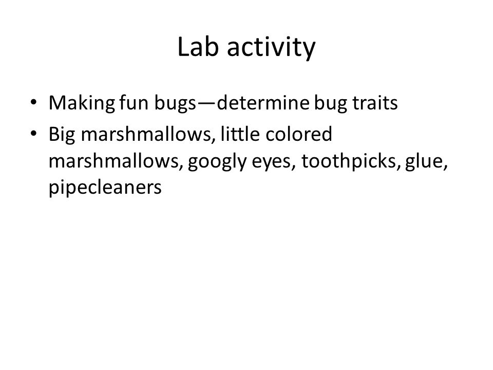 Lab activity Making fun bugs—determine bug traits Big marshmallows, little colored marshmallows, googly eyes, toothpicks, glue, pipecleaners