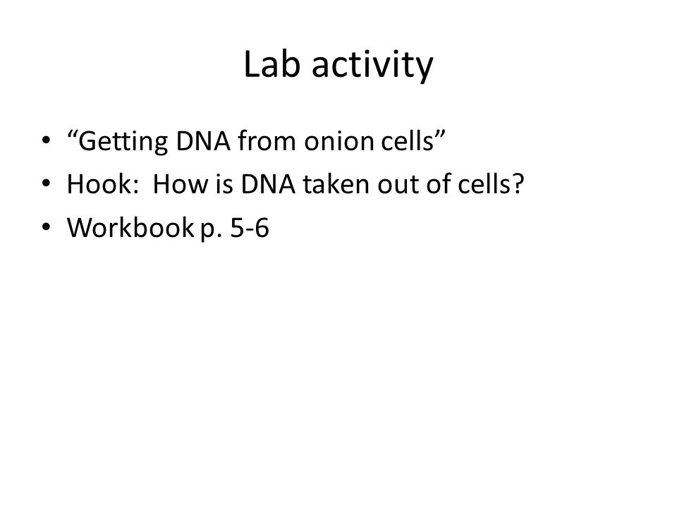 Lab activity Getting DNA from onion cells Hook: How is DNA taken out of cells Workbook p. 5-6
