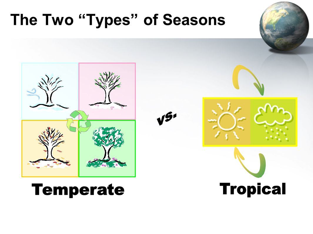 "The Two ""Types"" of Seasons"