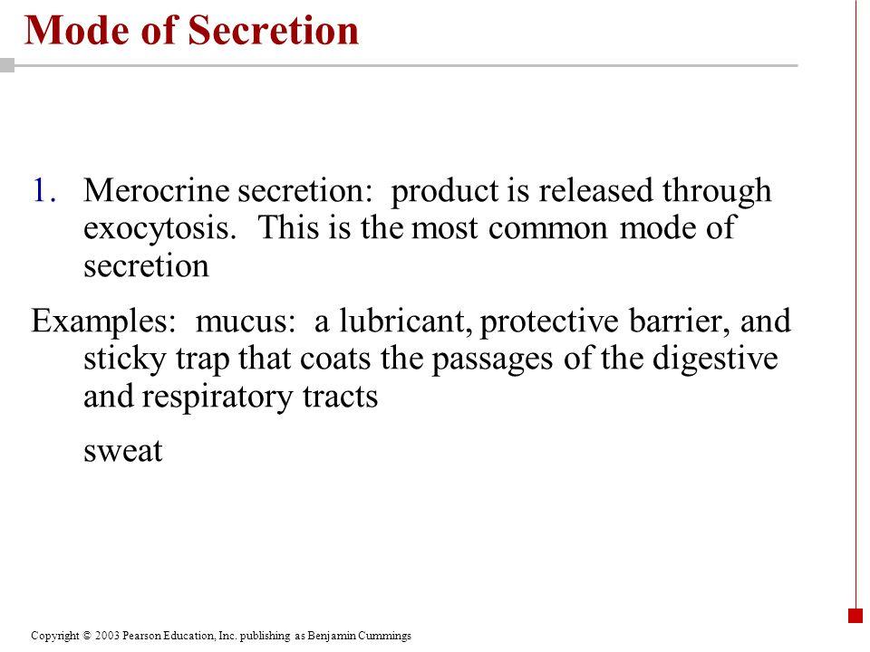 Copyright © 2003 Pearson Education, Inc. publishing as Benjamin Cummings Mode of Secretion 1.Merocrine secretion: product is released through exocytos