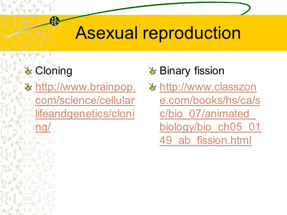 Asexual Reproduction Methods Asexual Reproduction Algae, amoeba bacteria growing animals, plants and fungi