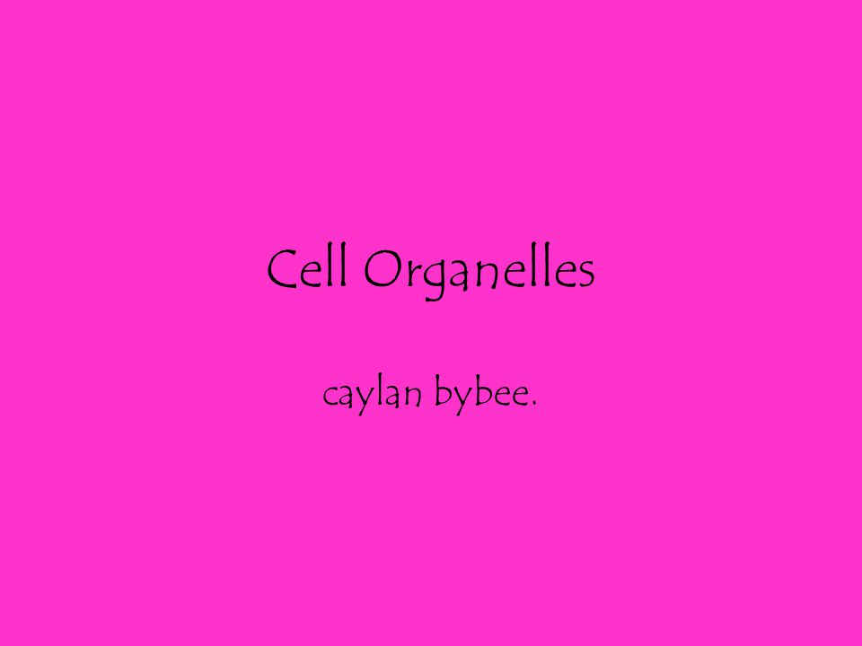 Animal Cells Contains a cytoskeleton inside the cell Does not contain chloroplasts since animals do not carry out photosynthesis Can be any shape Contain many small vacuoles