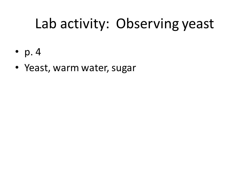 Lab activity: Observing yeast p. 4 Yeast, warm water, sugar