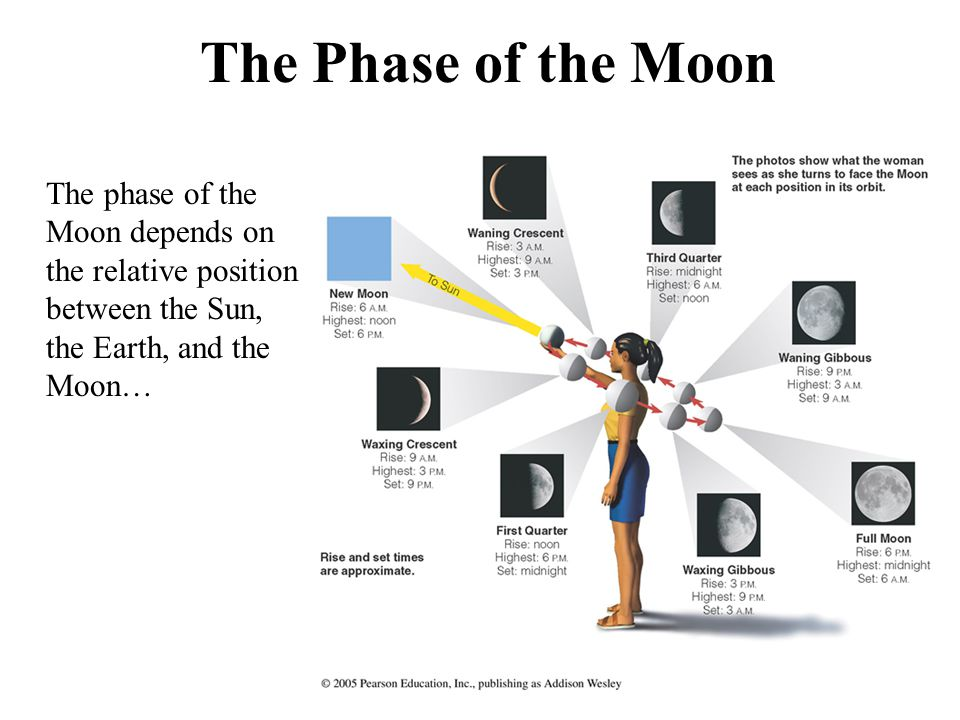 Phases of the Moon Click on the image to start animation