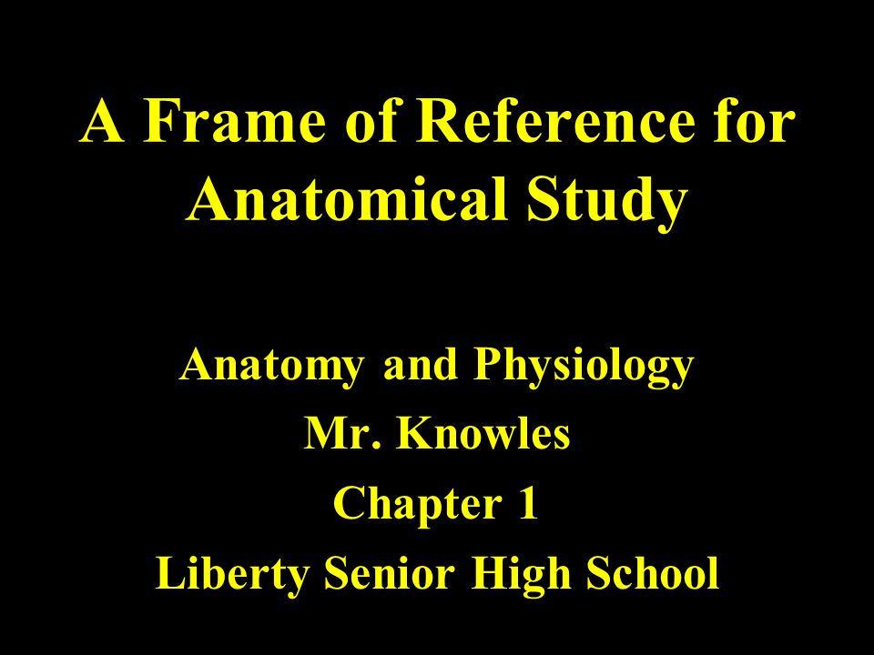 A Frame of Reference for Anatomical Study Anatomy and Physiology Mr.