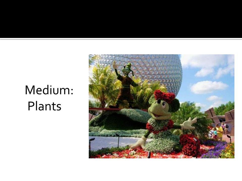Medium: Plants