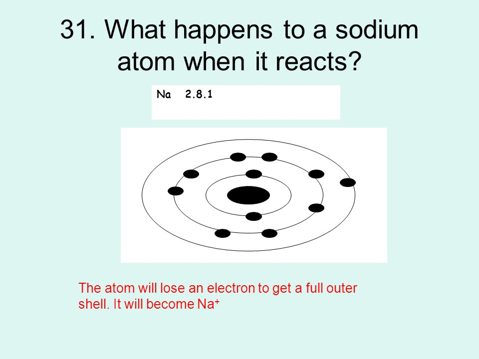 31. What happens to a sodium atom when it reacts? Na 2.8.1 The atom will lose an electron to get a full outer shell. It will become Na +