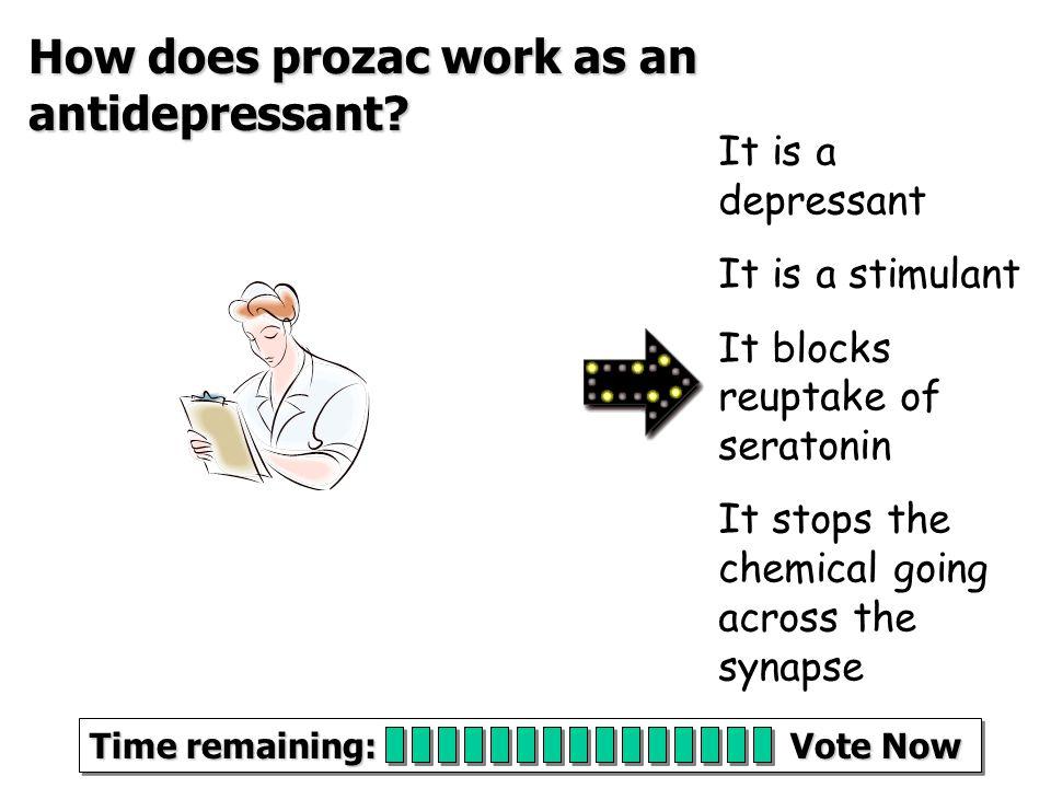 Brain and Mind Quiz.