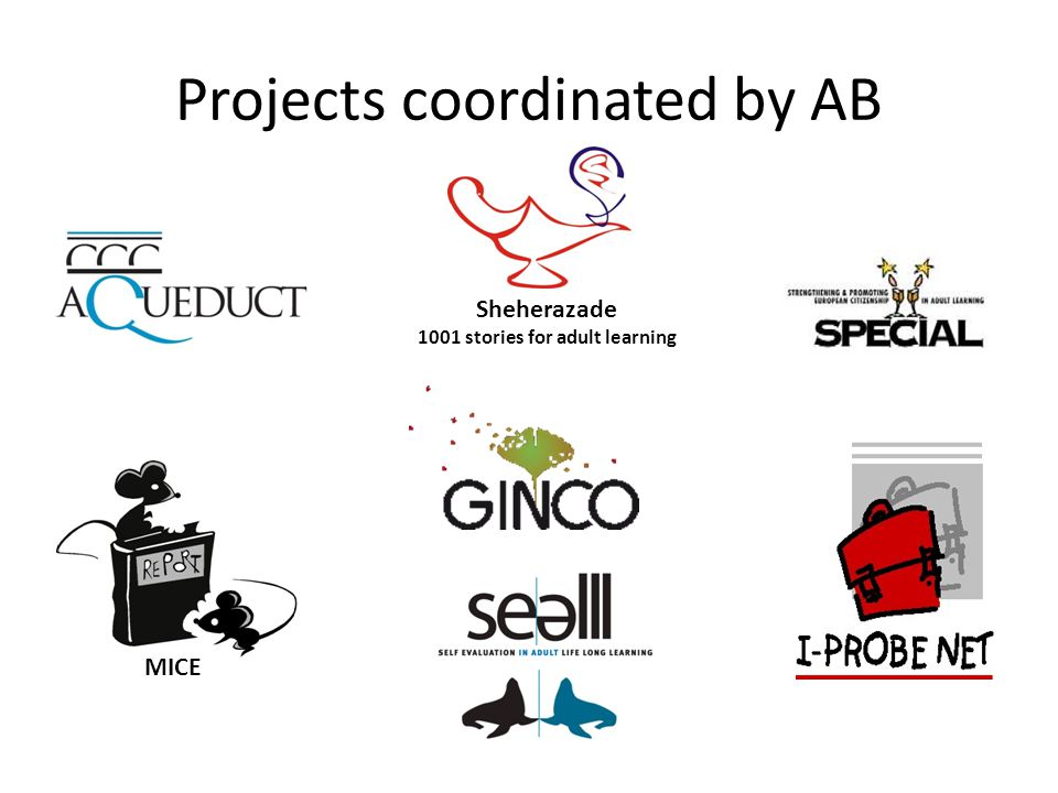 Projects with AB as a partner The Art of Networking ESCO-ORT