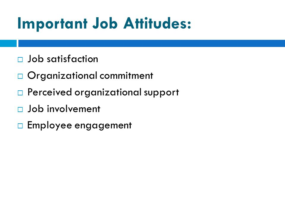Important Job Attitudes:  Job satisfaction  Organizational commitment  Perceived organizational support  Job involvement  Employee engagement