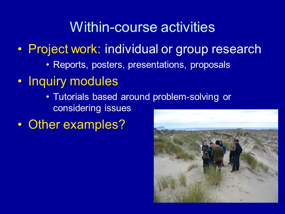 Within-course activities Project work: individual or group research Reports, posters, presentations, proposals Inquiry modules Tutorials based around problem-solving or considering issues Other examples