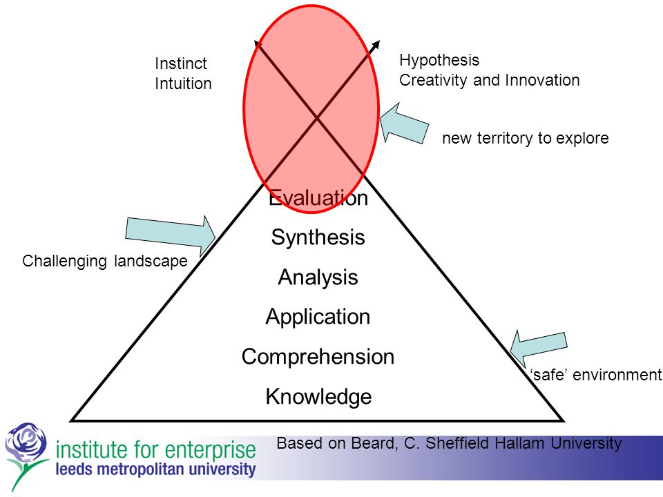 Evaluation Synthesis Analysis Application Comprehension Knowledge Hypothesis Creativity and Innovation Instinct Intuition 'safe' environment Challenging landscape new territory to explore Based on Beard, C.