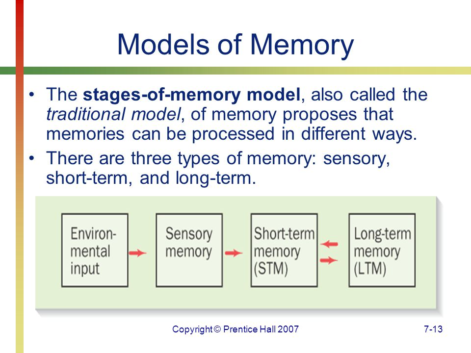 Copyright © Prentice Hall 20077-13 Models of Memory The stages-of-memory model, also called the traditional model, of memory proposes that memories can be processed in different ways.