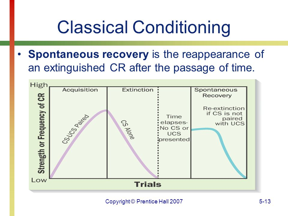 Copyright © Prentice Hall 20075-13 Classical Conditioning Spontaneous recovery is the reappearance of an extinguished CR after the passage of time.