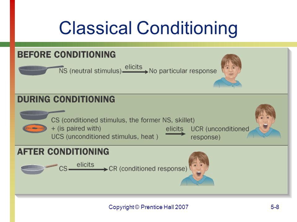 Copyright © Prentice Hall 20075-9 Classical Conditioning Acquisition is the training stage during which a particular response is learned (occurs after a CS is presented).