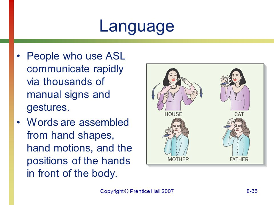 Copyright © Prentice Hall 20078-35 Language People who use ASL communicate rapidly via thousands of manual signs and gestures. Words are assembled fro