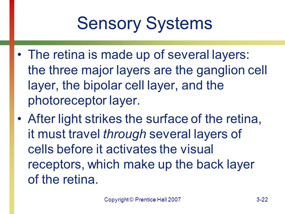 Copyright © Prentice Hall 20073-22 Sensory Systems The retina is made up of several layers: the three major layers are the ganglion cell layer, the bi
