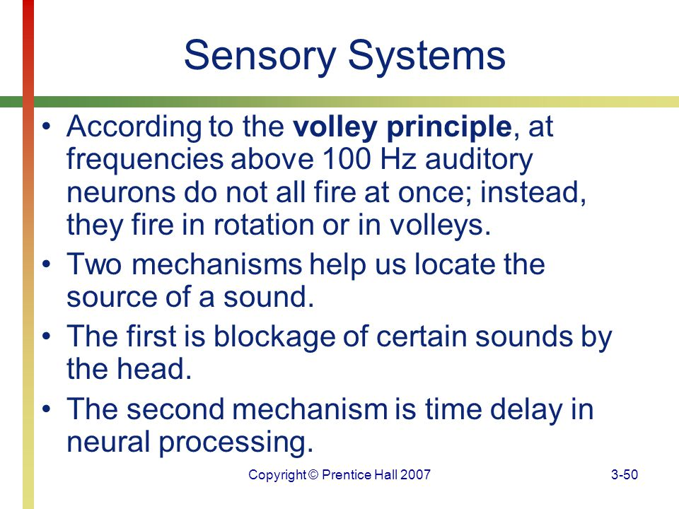 Copyright © Prentice Hall 20073-50 Sensory Systems According to the volley principle, at frequencies above 100 Hz auditory neurons do not all fire at