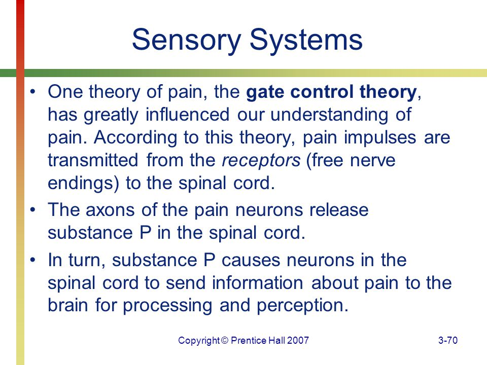Copyright © Prentice Hall 20073-70 Sensory Systems One theory of pain, the gate control theory, has greatly influenced our understanding of pain. Acco