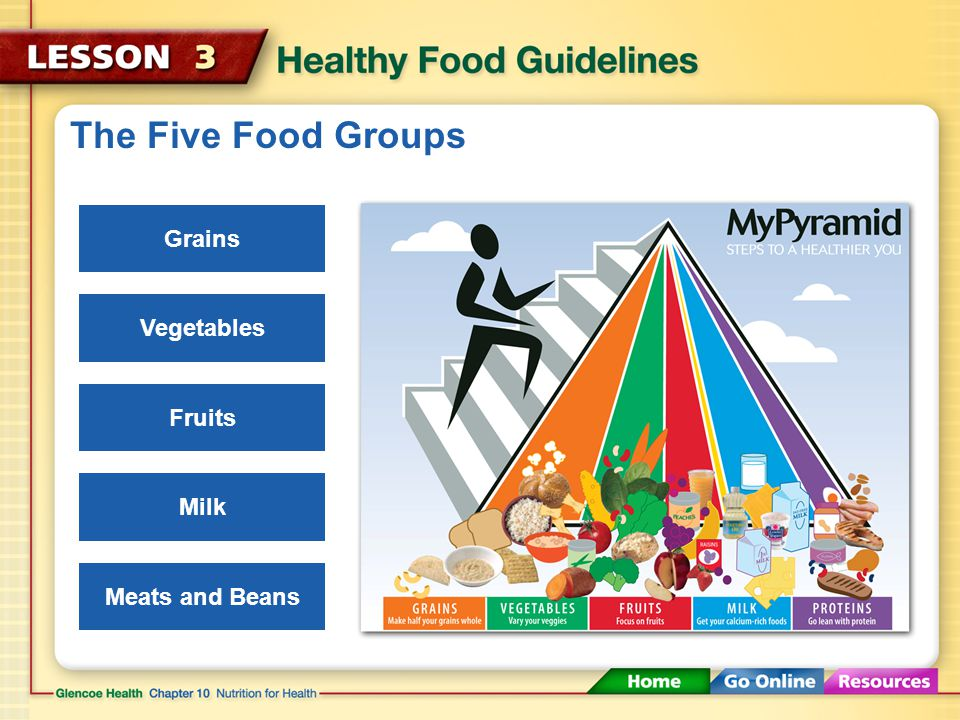 The Five Food Groups Grains Vegetables Fruits Milk Meats and Beans