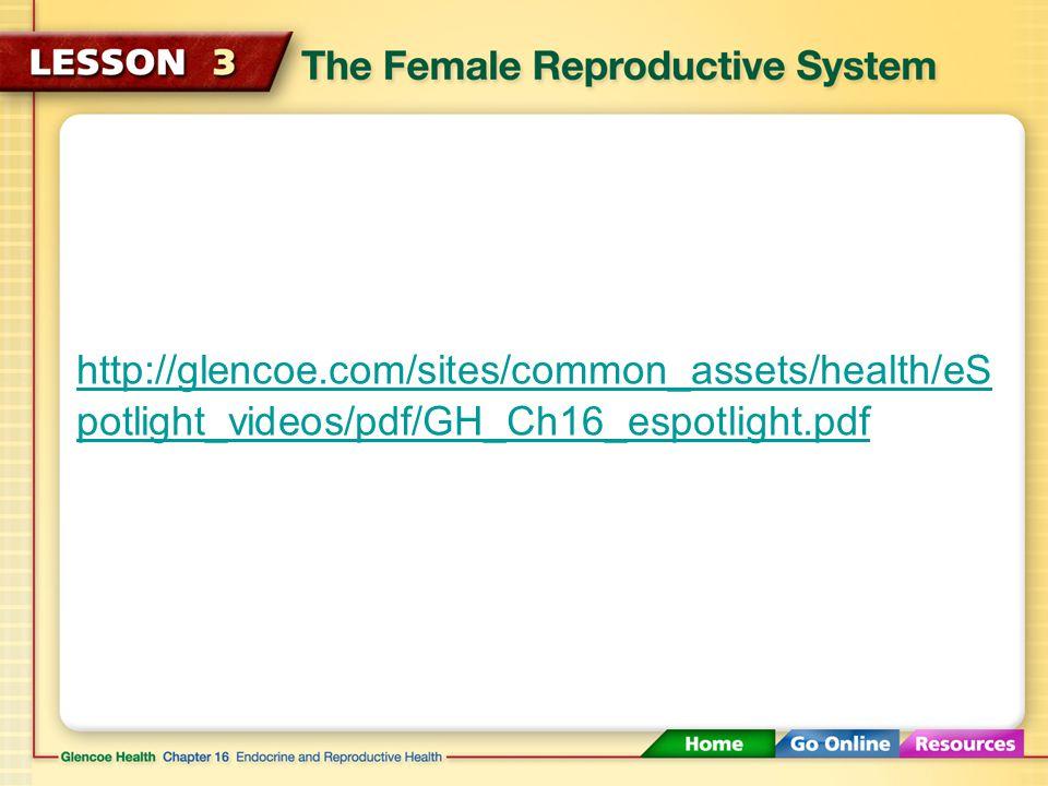 http://glencoe.com/sites/common_assets/health/eS potlight_videos/pdf/GH_Ch16_espotlight.pdf
