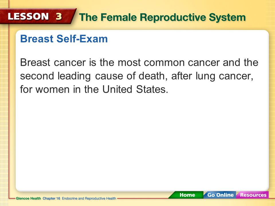 Breast Self-Exam Breast cancer is the most common cancer and the second leading cause of death, after lung cancer, for women in the United States.